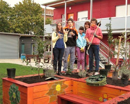 naturtraum-urban-gardening-projekte-ffda-02-gross-500x437